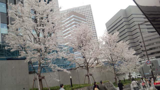 3月28日(木)